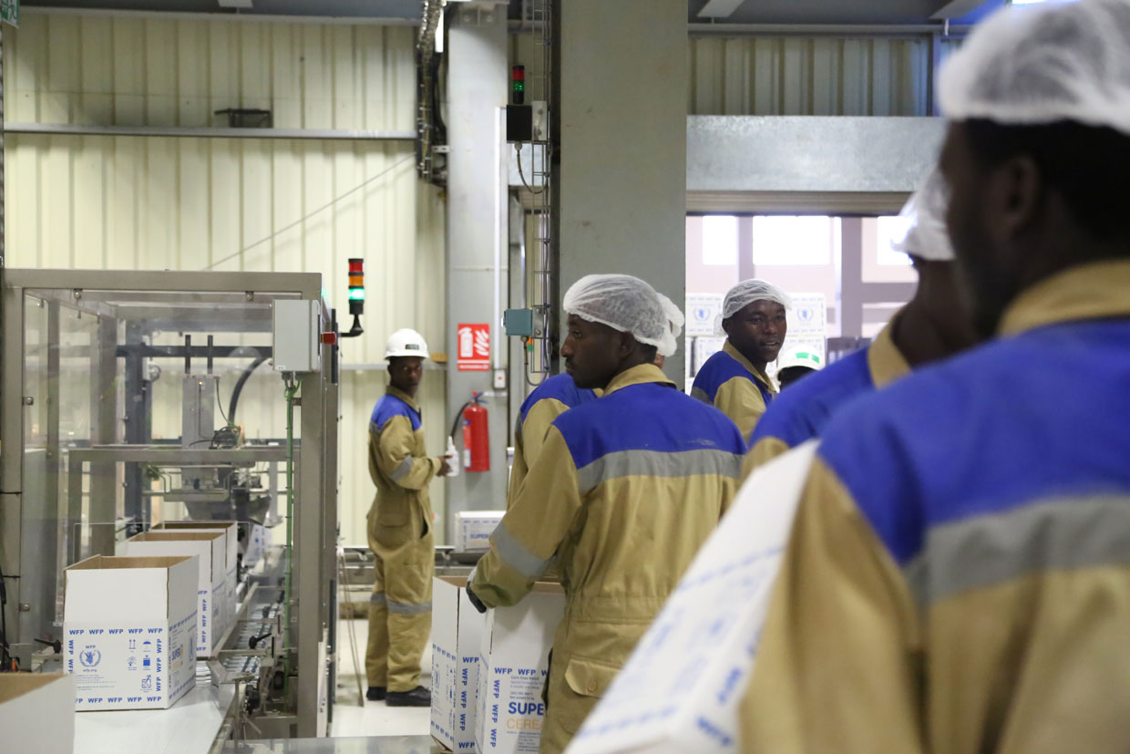 Employees-in-Factory